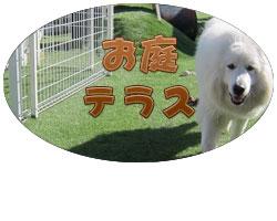 犬と遊べるお庭