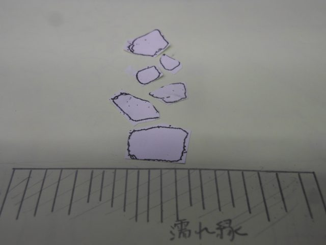 DSCN8463