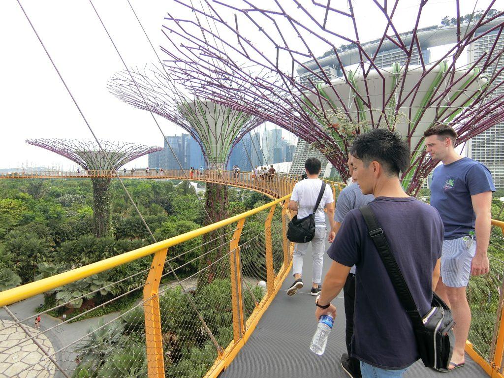 シンガポール ガーデンフェスティバル2018 ③