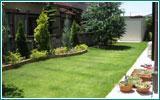 芝生に関するQ&A