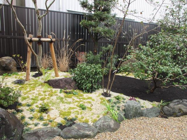 愛知県 一宮市 苔庭の美しさ